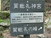 P1100265_2