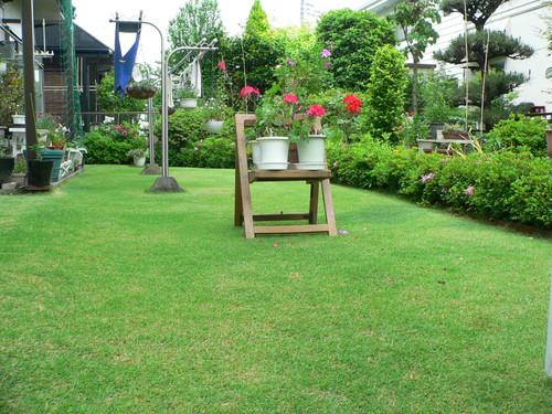 自慢の芝生
